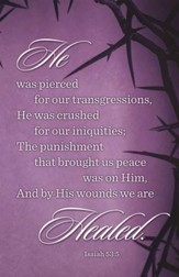 He Was Pierced for our Transgressions (Isaiah 53:5) Bulletins, 100