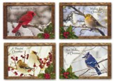 Nature Sings, Box of 12 Assorted Christmas Cards (KJV)