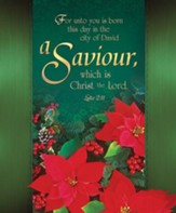 Saviour (Luke 2:11) Large Bulletins, 100