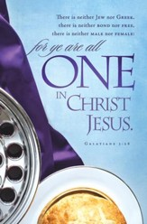 One in Christ Jesus (Galatians 3:28) Bulletins, 100