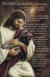 Psalm 23 Jesus and Lamb, Pack of 100 Large Bulletins