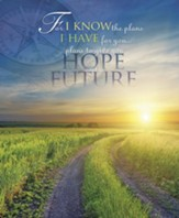 For I Know the Plans Path, Pack of 100 Large Bulletins
