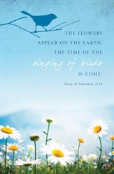 Flowers Appear (Song of Solomon 2:12) Bulletins, 100
