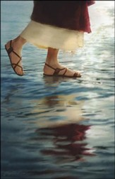 Christ Walking on Water (Matthew 14:22-33) Bulletins, 100