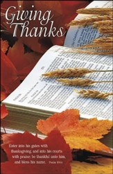 Giving Thanks (Psalm 100:4) Bulletins, 100