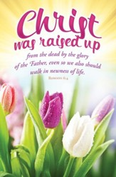 Christ Was Raised Up (Romans 6:4, KJV) Bulletins, 100