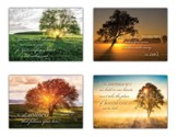 Be Still and Know (NIV) Box of 12 Sympathy Cards
