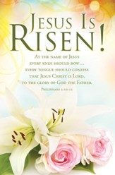 Jesus Is Risen! (Philippians 2:10-11, KJV) Bulletins, 100