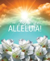 Jesus Christ is Risen Today Sunrise Easter Lilies Large Bulletins, 100