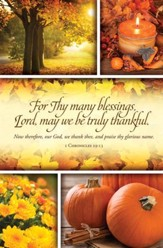 For Thy Many blessings, Lord (1 Chronicles 29:13, KJV) Bulletins, 100