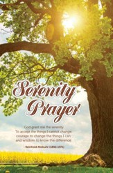 Serenity Prayer Bulletins, 100