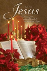 Christmas - Poinsettia & Bible