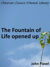 Fountain of Life Opened Up - eBook