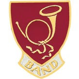 Band Lapel Pin