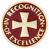 In Recognition of Excellence Pin