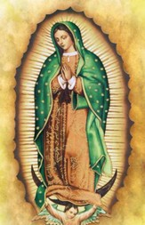 Lady of Guadalupe Bulletins, 100