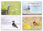 Cheerful Chirps (NIV) Box of 12 All Occasion Cards