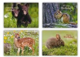 Nature's Friends Children's Birthday Cards, Box of 12