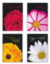 Bold & Beautiful Birthday Cards, Box of 12