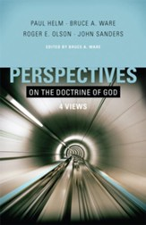 Perspectives on the Doctrine of God - eBook