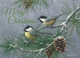 Pine Tree Chickadees (NIV), 20 Count Boxed Christmas Cards