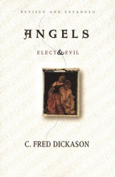 Angels Elect and Evil - eBook