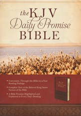The KJV Daily Promise Bible: The Entire Bible Arranged in 365 Daily Readings-Featuring One of God's Promises for Every Day of the Year