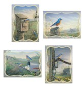 Bluebirds Encouragement Cards, Box of 12