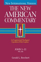 John 1-11: New American Commentary [NAC] -eBook