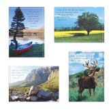 Mountain Scenic Birthday For Him Cards Box Of 12