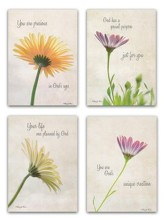 Daisy Birthday Cards, Box of 12