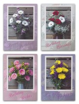 Daisy Bouquet Birthday Cards, Box of 12