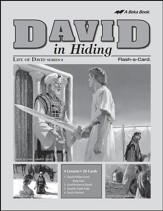 Extra David in Hiding Lesson Guide