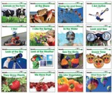 Sight Word Readers Science Set (set of 16 titles)