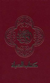 Arabic NAV Bible - Burgundy