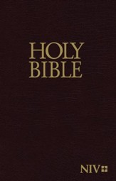 NIV Economy Bible--hardcover, burgundy