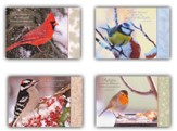 Birds Of A Feather Christmas Cards, Box of 12