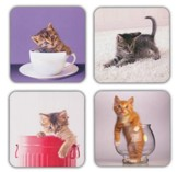 Playful Kittens Birthday Cards, Box of 16
