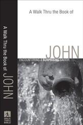 Daily steps for godchicks ebook holly wagner 9781441226006 walk thru the book of john a a surprising savior ebook fandeluxe PDF