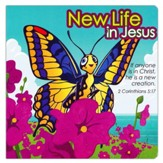 New Life in Jesus Board book