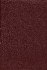 NAS Wide Margin Bible, Bonded leather, Burgundy             - Slightly Imperfect