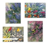 Birds Get Well Cards, Box of 12