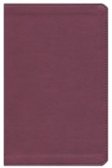 ESV Student Study Bible, TruTone, Burgundy - Slightly Imperfect