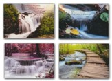Waterscapes, Get Well Cards, Box of 12 (NIV)