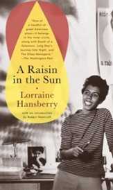 A Raisin in the Sun - eBook