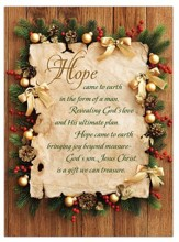 Hope Came to Earth Box of 12  Christmas Cards