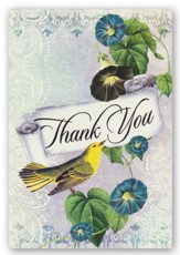 Blank Thank You Note Cards, Morning Glory, Box of 12