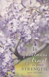 In Quietness and Trust Is Your Strength, Prayer Journal