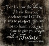 Jeremiah 29:11 Wall Decor