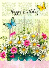 Happy Birthday, Garden Song Cards, Box of 12